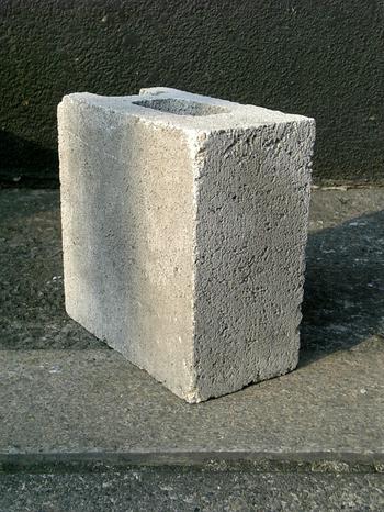 Vfsh0559 今日は半分サイズのブロックが、 斜に構えて待っていた。 2007/02...